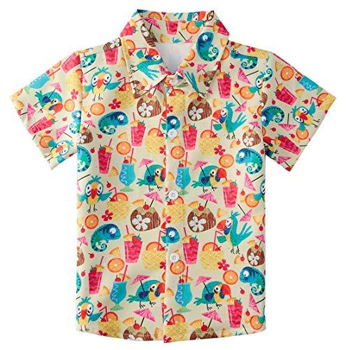 - RAISEVERN Little Boy's Button Down Shirts Parrot Short Sleeve Beachwear Cartoon Orange Juice Tropical Hawaiian Dress Shirt for Toddler (2-3T)