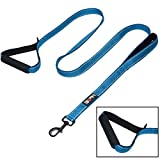 tobeDRI Heavy Duty Dog Leash - 2 Padded Handles, 6 feet long - Dog Training Walking Leashes for Medium Large Dogs (Blue)