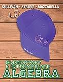 Elementary and Intermediate Algebra 3rd Edition