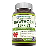 Cheap Pure Naturals Hawthorn Berries – 565mg, Capsules * Powerful Antioxidant Activity * Supports Cardiovascular Health (120 Count (Pack of 2))