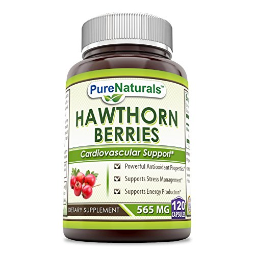 Pure Naturals Hawthorn Berries – 565mg, Capsules * Powerful Antioxidant Activity * Supports Cardiovascular Health (120 Count (Pack of 2))