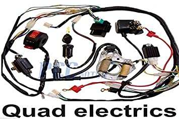 51PlsbPfpSL._SX355_ amazon com 3 5l 50 70 90 110cc wire harness wiring cdi assembly kazuma meerkat 50cc wiring diagram at crackthecode.co