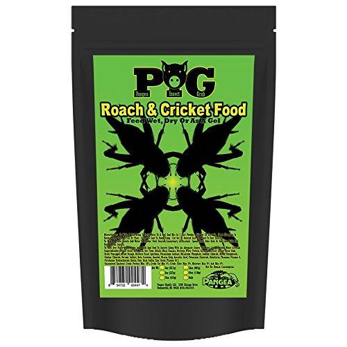 - Pangea Roach & Cricket Food (8 oz)