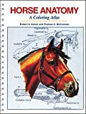 img - for Horse Anatomy: A Coloring Atlas, 2nd Edition book / textbook / text book