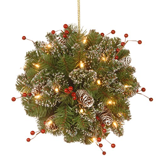 National Tree 12 Inch Glittery Mountain Spruce Kissing Ball with Red Berries, Cones and 35 Battery Operated Warm White LED Lights - Ball Christmas Decoration Kissing Holiday
