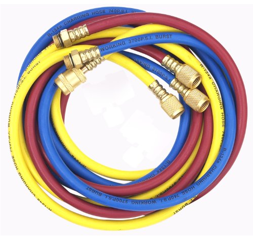 Robinair (60096) Enviro-Guard Hose Set for R-134a - 96'', Set of 3 by Robinair