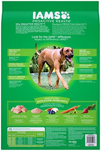 IAMS Proactive Health Dry Dog Food, Large Breed, 30 lbs. (Standard Packaging)