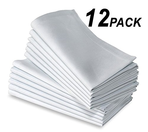 NEW 100% Cotton premium napkins, Restaurant dinner cloth linen white, Ringspun hand towels (21X21), 12 Piece by AMX (Pale Blue Dinner Set)