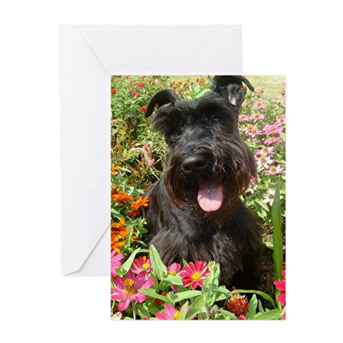 CafePress Black Miniature Schnauzer Greeting Card, Note Card, Birthday Card, Blank Inside Matte