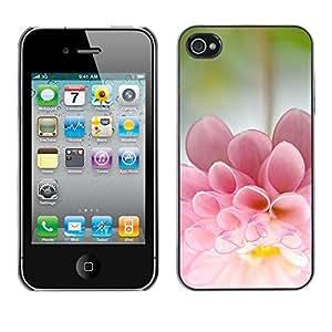 Cubierta de la caja de protección la piel dura para el Apple iPhone 4 / 4S - flower sun summer bloom nature