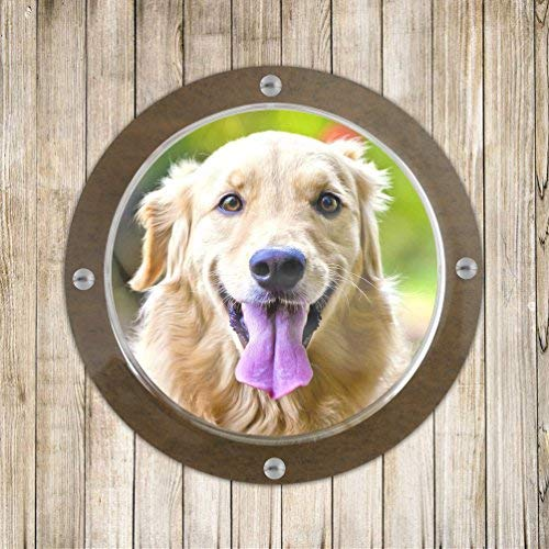 Petacc Dog Fence Window Clear Dome Window Durable Acrylic Peek Window for Backyard Fence or Dog House, Transparent