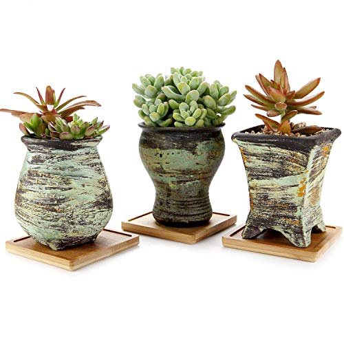 T4U New Ceramic Succulent Pot Set of 3, Colorful Oil Painting Style Porcelain Planter Flower Herbs Container for Home office Porch Balcony Living Room Bed Room Decoration Indoor Outdoor Christmas Gift (Flower Pots For Sale Indoor)