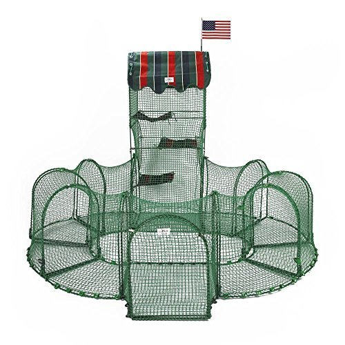 Grand Prix Outdoor Cat Enclosure - Green