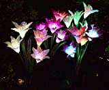 [4 Pack] Solar Lights Outdoor - Solar Garden Lights with 16 Lily Flowers | Color Changing LED Solar Stake Lights for Garden, Patio, Path, Backyard