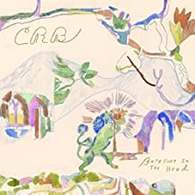 Chris Robinson Brotherhood - 'Barefoot In The Head'