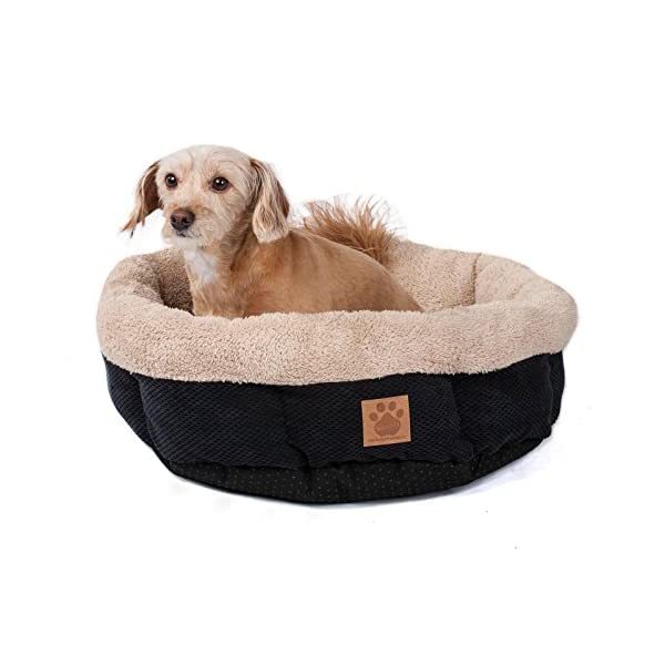 Precision Pet SnooZZy Mod Chic 2