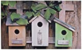 Esschert Design Birdhouses Doormat - Best Reviews Guide