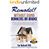 Remodel - Without Going Bonkers or Broke: A Home Improvment Primer