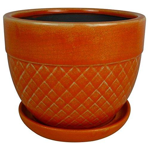 Trendspot 6 in. Dia Coral Ceramic Acorn Bell - Acorn Planter
