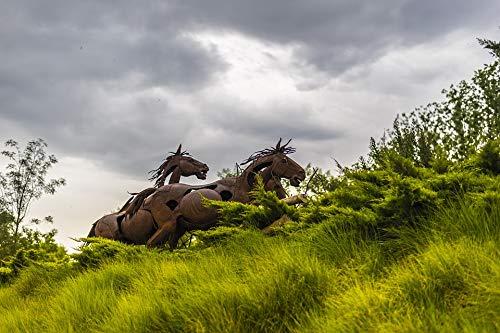 Home Comforts Framed Art for Your Wall Gardens Lleida Iron Horses Garden Horses Sculpture Vivid Imagery 10 x 13 Frame