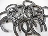10 Pc New (old look) Cast Iron Horseshoes for Crafting #3