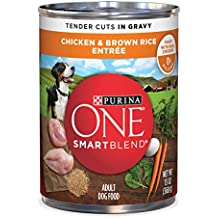 Purina ONE SmartBlend Tender Cuts Chicken & Brown Rice Entree in Gravy Adult Wet Dog Food - (12) 13 oz. Cans