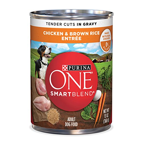 Purina ONE Natural, High Protein Gravy Wet Dog Food; SmartBlend Tender Cuts Chicken & Brown Rice - 13 oz. 12 pack