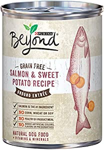 Purina Beyond Wet Dog Food, Grain Free Salmon & Sweet Potato Recipe, 13-Ounce Can, Pack of 12