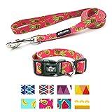 azuza Dog Collar and Leash Set, Adjustable Nylon Collar with Matching Leash,Pineapple,Small