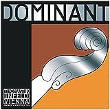 Thomastik-Infeld 193 Dominant Nylon Core Bowed Bass String, Medium Gauge, 3/4 Scale, E