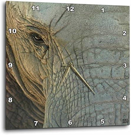 3dRose Elephant – Wall Clock, 13 by 13-Inch DPP_9937_2