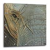 3dRose Kike Calvo Elephant Wall Clock, 10 by 10-Inch