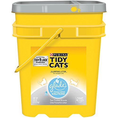 Purina Tidy Cats With Glade Tough Odor Solutions Clear Springs Cat Litter - (1) 35 lb. - Glades Shopping