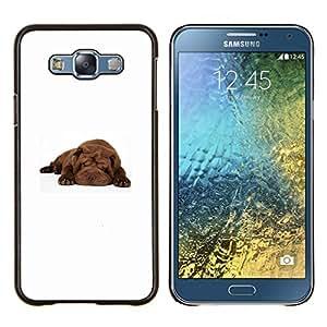 EJOOY---Cubierta de la caja de protección para la piel dura ** Samsung Galaxy E7 E700 ** --Shar Pei dormir del perro de perrito de Brown
