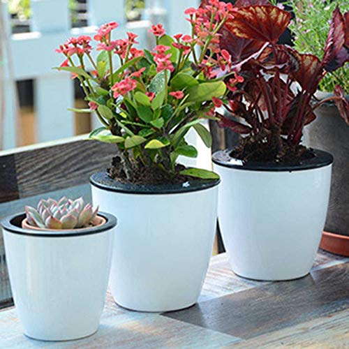 Best Quality - Flower Pots & Planters - Fashioable Automatic Self Watering Flower Plants Pot Put in Floor Irrigation for Garden Indoor Home Decoration Gardening - by SeedWorld - 1 PCs