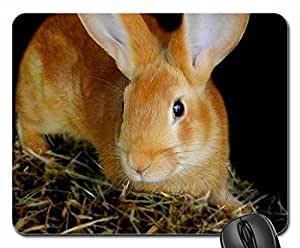 bunny Mouse Pad, Mousepad (Rodents Mouse Pad)