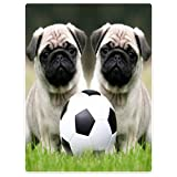 SXCHEN Blankets Plush Sofa Bed Throw Blanket Funny Pug Dogs With Soccer Ball Football 30''x40''