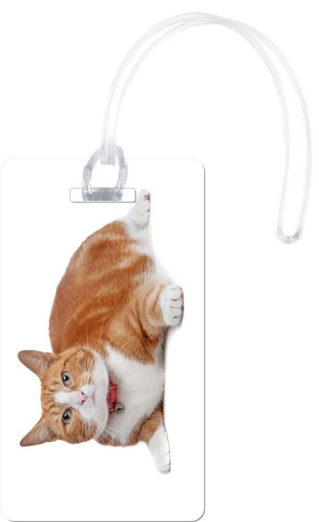 Rikki Knight European Short Haired Ginger And Cat Flexi Luggage Tags, White