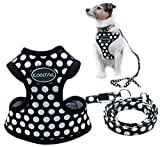 Puppy Harness and Leash for Small Dog Soft Mesh Pet Vest Black XS