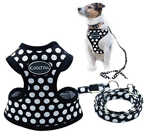 Best of the Best Puppy harness