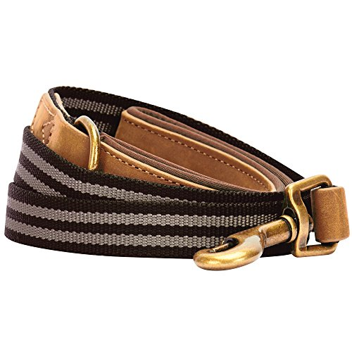 Blueberry Pet 6 Colors Polyester Fabric Webbing and Soft Genuine Leather Dog Leash with Soft & Comfortable Handle, 6 ft x 1