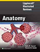 Lippincott® Illustrated Reviews: Anatomy Front Cover