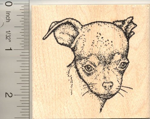 Chihuahua (Diva Belle) Rubber Stamp