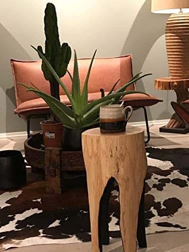 Amazon.com: Tree Stump Table, Rustic Coffee Table, Wood Furniture, Reclaimed Wood Table, Rustic