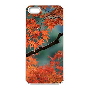 HEHEDE Phone Case Of Maple leaves red for Iphone 5 5g 5s