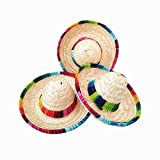 Crazy Night Natural Straw Mini Sombrero/New Design Mini Mexican Hat,Tabletop Party Supplies,Fiesta Party Birthday Party Decorations (Pack of 6)