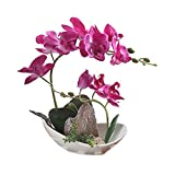 LOUHO Artificial Phaleanopsis Arrangement with Vase Decorative Orchid Flower Bonsai Rockery Series (Purple Orchid+Mountain)