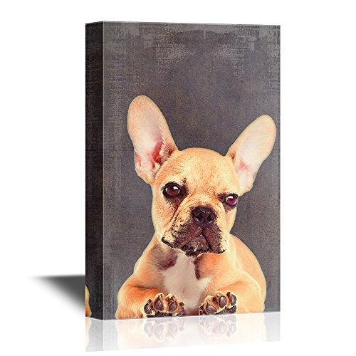 Artistic Dog Illustration on Grunge Background