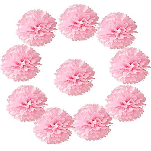 Hmxpls 10pcs Tissue Hanging Paper Pom-poms Flower Ball Wedding Party Outdoor Decoration, Premium Tissue Paper Pom Pom Flowers Craft Kit(Pink)