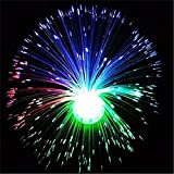 LBZEZR Multicolor LED Fiber Optic Lamp Light Holiday Wedding Centerpiece Fiberoptic
